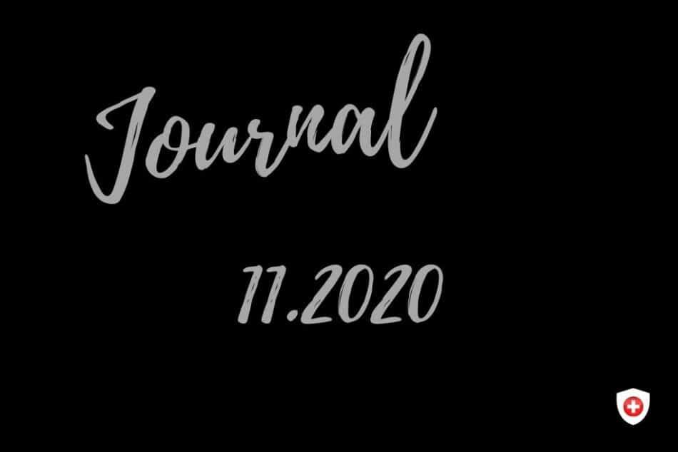 Journal 11.2020